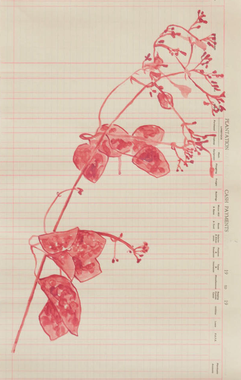 Wild Jasmine Ink Vine, Annalee Davis, Material Latex on Plantation Ledger Pages , each  22 x 13 inches Year 2015